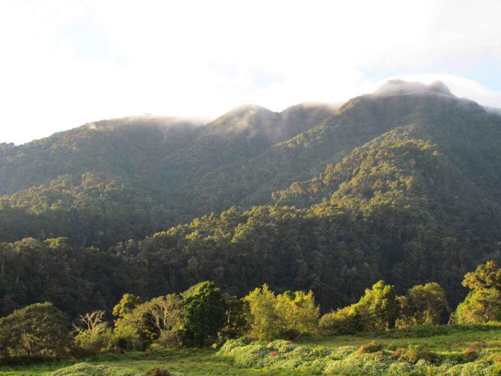 Cerro Itamut, Panamá