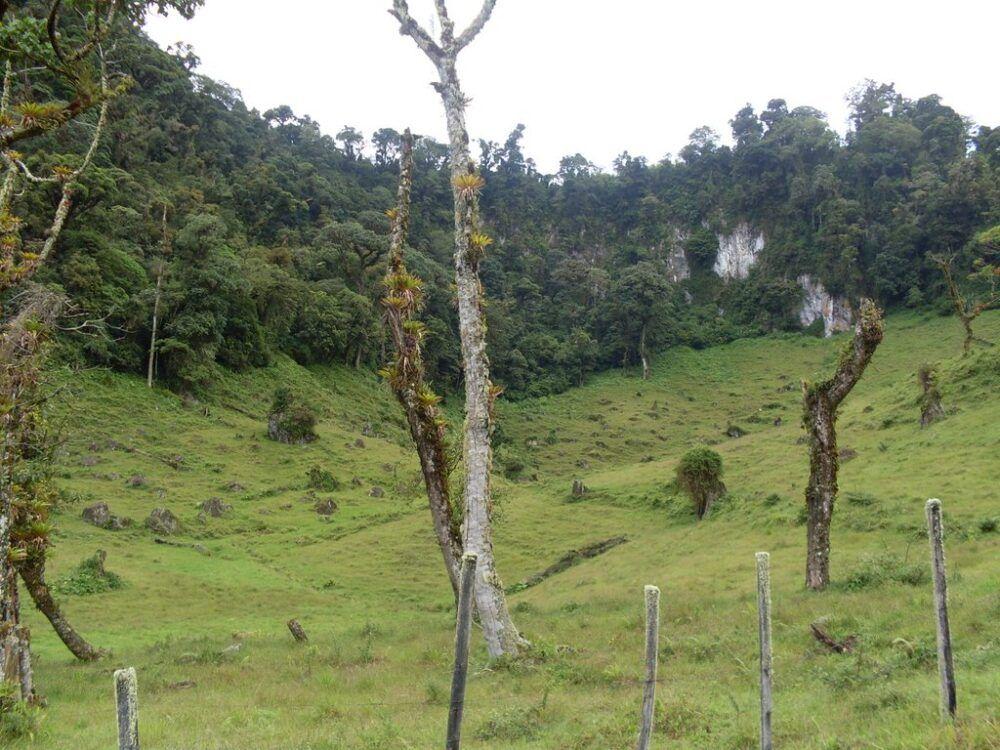 Dónde está Cerro Respingo, Panamá
