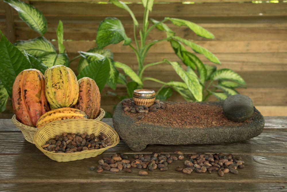 Dónde está Green Acres Chocolate Farm, Panamá