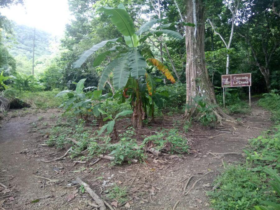 Como llegar a Cascada La Diana, Panamá.