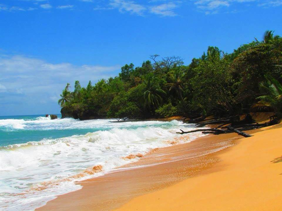Qué ver y visitar en Bocas del Toro