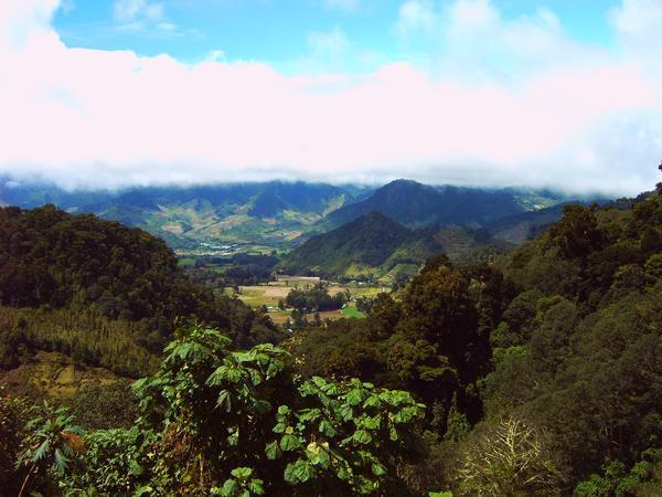 Cerro Respingo, Panamá