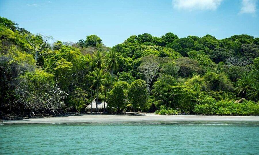 Cómo llegar a Isla Palenque, Panamá