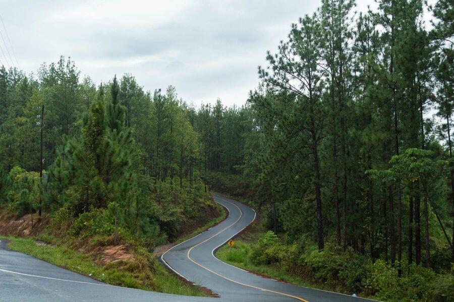 Cómo llegar a La Yeguada - Reserva Forestal, Panamá