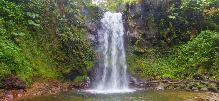 ¿Cómo llegar a The Lost Waterfalls, Panamá?