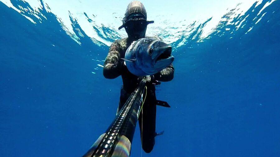 Pesca Submarina en Panamá
